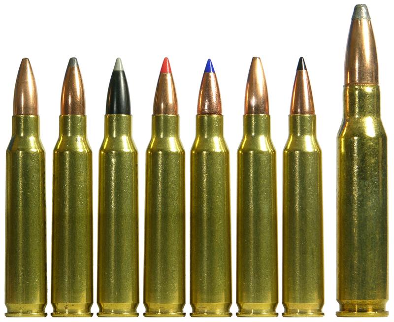 amunicja rem 223 jaka kupić